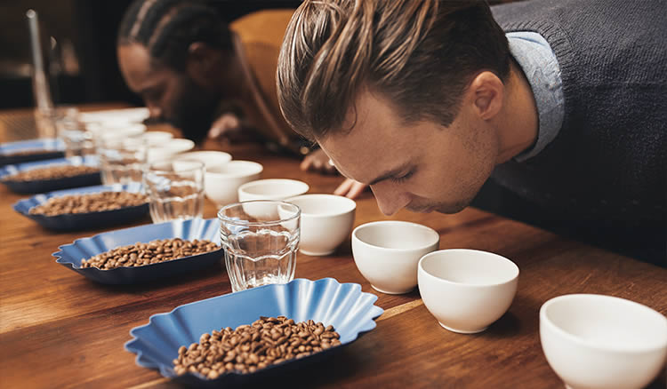 Barista Training | Coffee Course